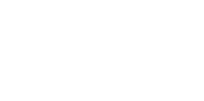 EU Turn logo
